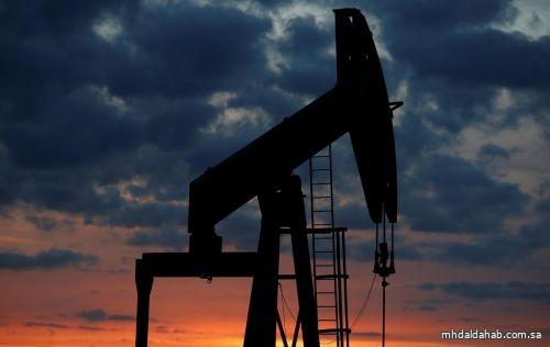 النفط يخسر المزيد من قوة الدفع بعد خفض أوبك توقعات الطلب