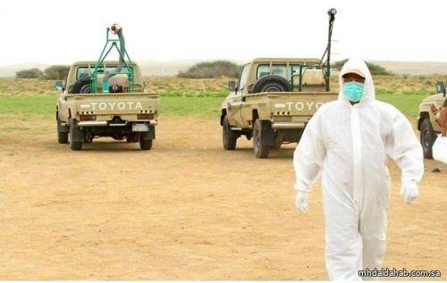 """بـ133 سيارة مكافحة.. """"البيئة"""" تستعد لمواجهة الموسم الربيعي للجراد الصحراوي"""