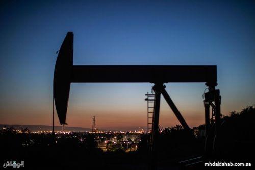 النفط ينزل في ظل تفوق مخاوف الطلب على اضطراب الملاحة في قناة السويس