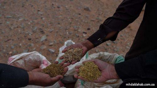"""""""البيئة"""" تطلق خدمة استيراد بذور التجارب للشركات والمؤسسات الزراعية"""