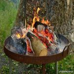 """""""الأمن البيئي"""": عدم إطفاء النار بشكل كامل بعد التنزه مخالفة وهذه غرامتها"""